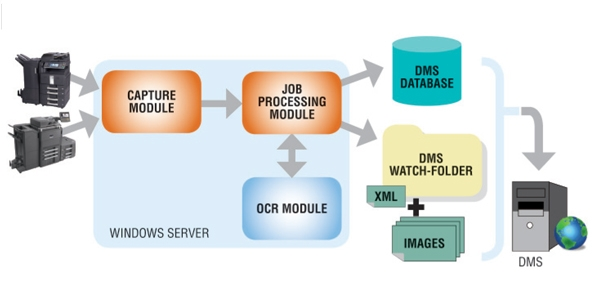 DMS LINK Workflow Design